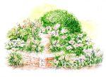 нюансный цветник в персиково-розовых тонах