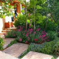 Цветник вдоль садовых ступеней