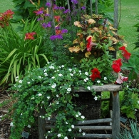 цветочная композиция на стуле