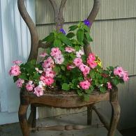 старый стул с цветами
