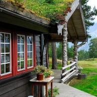 озеленение двускатной крыши дома