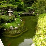 японский стиль водоема в саду