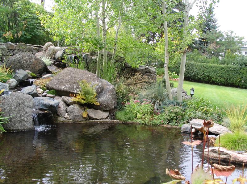 Как сделать естественный пруд своими руками