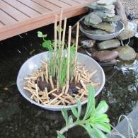 небольшой прудик в японском стиле с фонтаном из камней