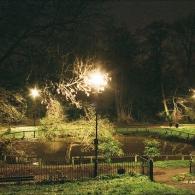декоративный водоем ночью