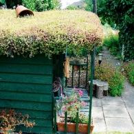 место для отдыха под крышей из очитков
