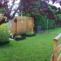 газон вдоль ограды