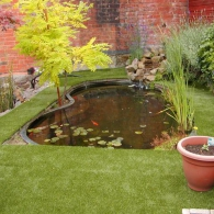 искусственный газон вокруг водоема