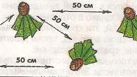 Схема посадки ирисов №1