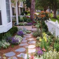 разноцветье маленького сада