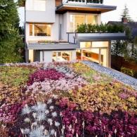 living_roof_design