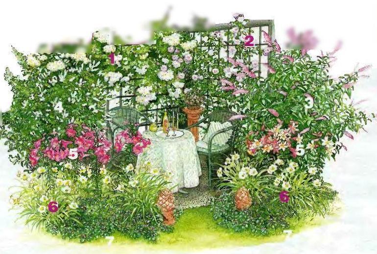 Плетистая роза 'Bobby James'