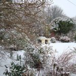сад в феврале_фото