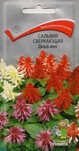 Купить семена сальвии